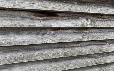 Die verschiedenen Holzarten, Qualitätsstandards und Profilarten
